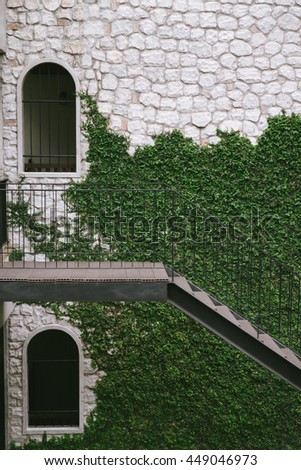 Vintage Greenery Green British Wall beside Path Walkway House and Decoration Rustic Style Grass Garden