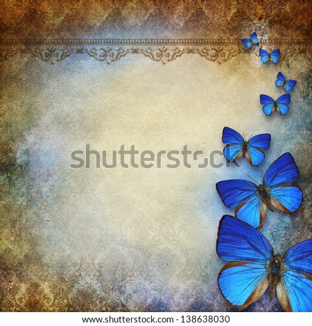 vintage grunge background with butterfly - stock photo