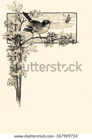 vintage illustration with bird and butterfly