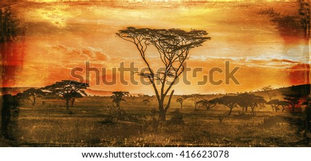 Vintage image of an African sunset in the Serengeti National Park, Tanzania - stock photo
