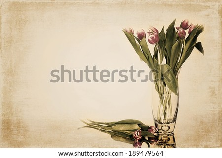 Vintage image with vase filled with pink tulips and its reflections in glass it is sitting on - stock photo