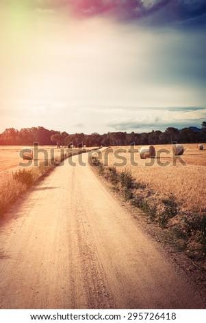 Vintage landscape wheat field. Digital flare edition. - stock photo