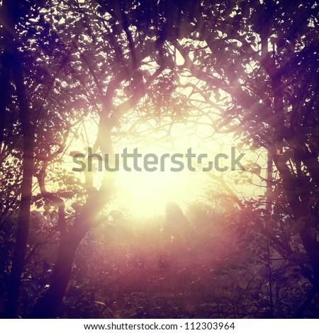 Vintage light background - stock photo