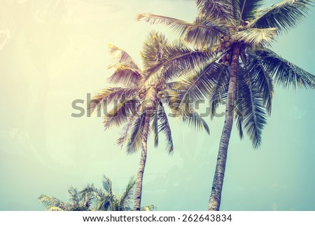 Vintage nature background of coconut palm tree on tropical beach blue sky with sunlight of morning in summer,photo paper texture with  instagram filter  - stock photo