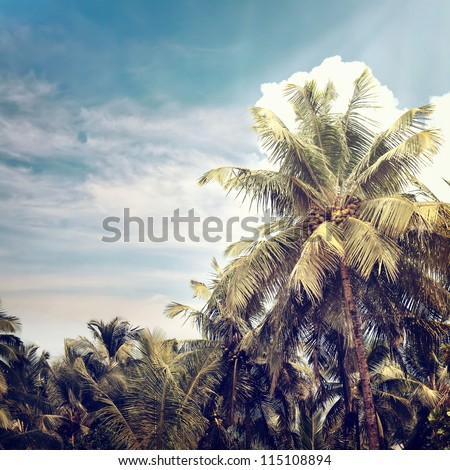 Vintage nature beach background - stock photo