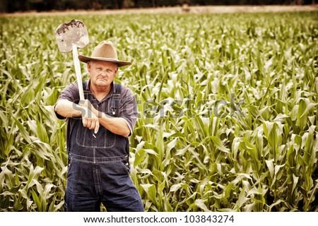 Vintage Old Farmer in the Corn Fields - stock photo