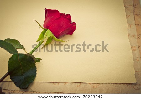 Vintage old paper background with red rose - stock photo
