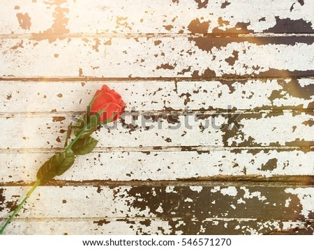 Vintage one red rose flower on grunge wood abstract background with flare light and hipster style.Concept valentine's day for love and copyspace your text.