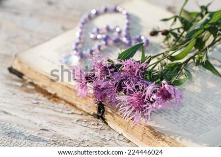 vintage open book on wood desk with cornflower (Centaurea jacea) - stock photo