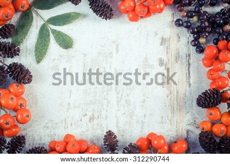 Vintage photo, Frame of autumn fruits of forest and copy space for text on old rustic wooden background, red rowan with green leaves, alder cone and elderberry - stock photo