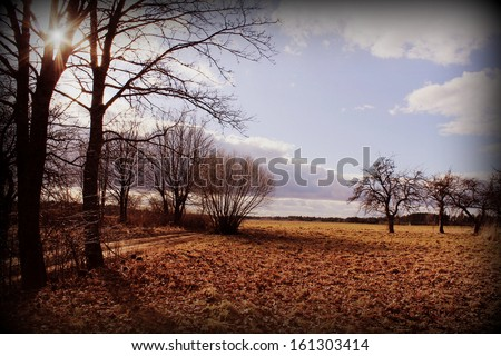 Vintage photo of autumn background