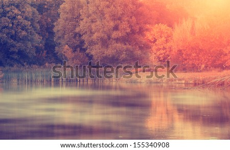 Vintage photo of autumn impression - stock photo