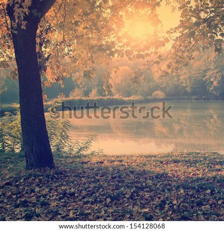 Vintage photo of autumn scene - stock photo
