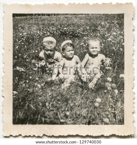 Vintage photo of babies playing on meadow, circa 1950 - stock photo