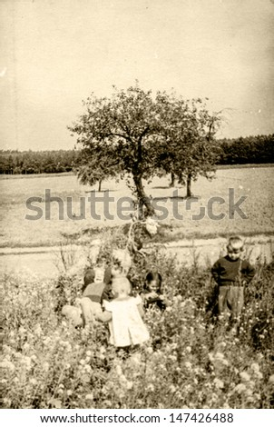 Vintage photo of children playing on farm, fifties - stock photo
