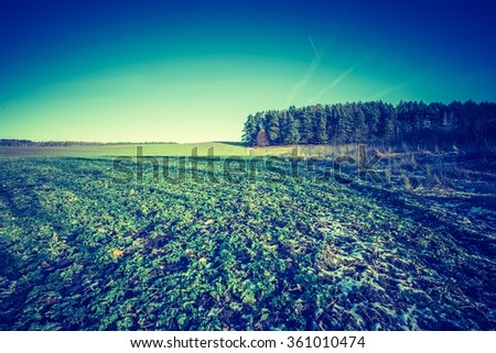 Vintage photo of early winter or late autumnal landscape of field at good weather. Fields with little snow.