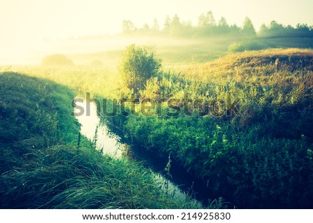 vintage photo of foggy meadow landscape - stock photo