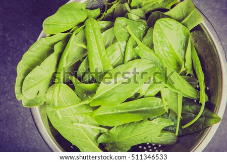 Vintage photo of fresh organic sorrel in sieve on black table