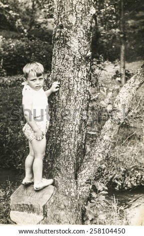 Vintage photo of little boy on tree trunk, early 1950's - stock photo