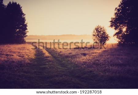 vintage photo of morning foggy meadow in summer. rural landscape - stock photo
