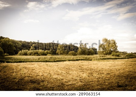 Vintage photo of nature landscape with fields and meadows at summer. Idyllic rural landscape and agricultural, vintage effect with vignette.