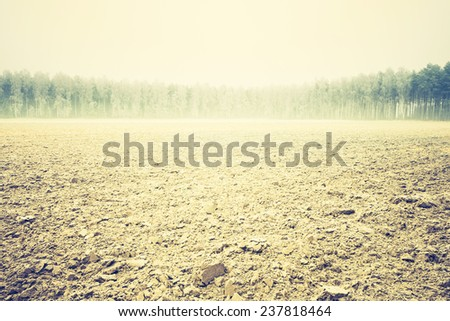 vintage photo of plowed field and birch forest  - stock photo