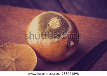 Vintage photo of rotten lemon - stock photo