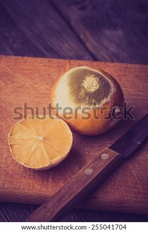 Vintage photo of rotten lemon - stock photo