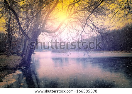 Vintage photo of spooky dark forest in winter - stock photo