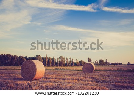 vintage photo of straw bales on field. rural landscape