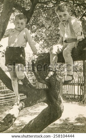 Vintage photo of two brothers sitting on tree, early 1950's - stock photo