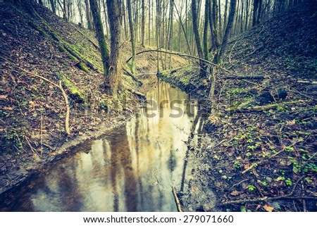 Vintage photo of wetlands at springtime. Green wetlands with dead trees trunk photographed in spring. Polish landscape.   - stock photo