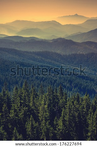 Vintage picture. Carpathian mountain valley with many hills in a fog - stock photo