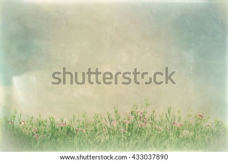 Vintage picture of summer meadow flowers in green grass. Nature background with copy-space - stock photo
