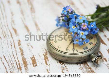 Vintage Pocket watch and forget-me-not flowers on a wooden background - stock photo