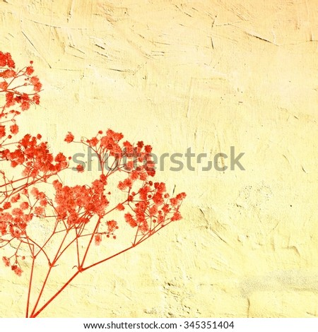 Vintage red wild herbs on cracked background