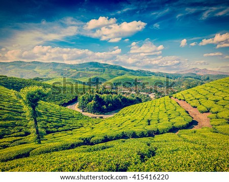 Vintage retro effect filtered hipster style image of green tea plantations in the morning, Munnar, Kerala state, India - stock photo