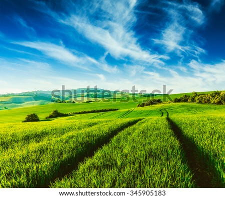 Vintage retro effect filtered hipster style image of Rolling summer landscape with green grass field under blue sky