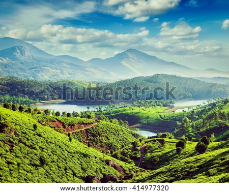 Vintage retro effect filtered hipster style image of tea plantations and Muthirappuzhayar River in hills near Munnar, Kerala, India - stock photo