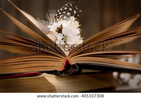 Vintage romantic background with old book, apricot flower, and little black and white feather.