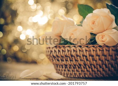Vintage roses and background of bokeh
