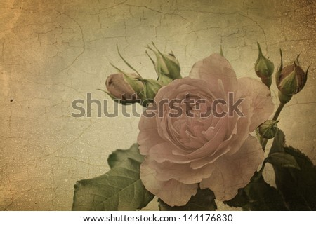 Vintage roses. Retro. Greeting card - stock photo