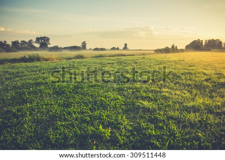 Vintage rural landscape. field and grass - stock photo