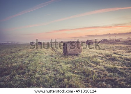 Vintage rural landscape. field and grass. sunrise over the meadow