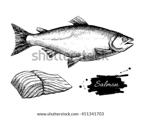 Vintage salmon drawing. Hand drawn monochrome seafood illustration. Great for menu, poster or label.