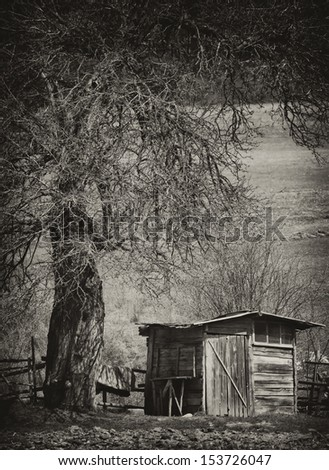 vintage spooky background with old creepy tree and wooden house