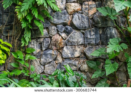 Vintage Stone walls in the botanical gardens and plants. - stock photo