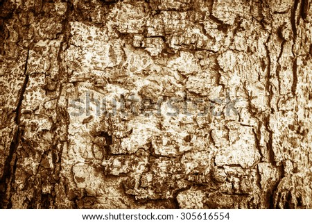 Vintage style - Abstract Black and White tree bark texture - stock photo