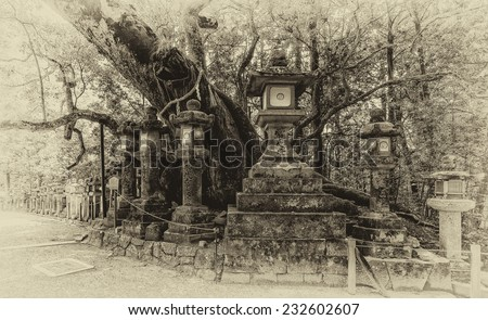 Vintage style black and white image of stone lanterns at the Kasuga Taisha Shrine in Nara, Japan. Kasuga Shrine and the Kasugayama Primeval Forest are registered as a UNESCO World Heritage Site.