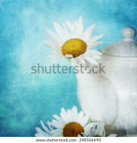 Vintage style, fresh daisy flowers, spring flowers - stock photo